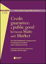 Immagine di Credit guarantee: a public good between State and Market